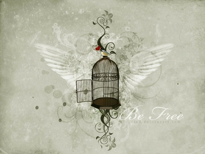 wings20freedom20text20cage20artwork20birds201600x120020wallpaper_www-knowledgehi-com_74